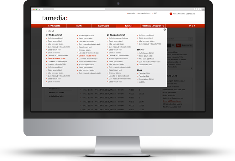 Portfolio-Intranet-Tamedia-menu